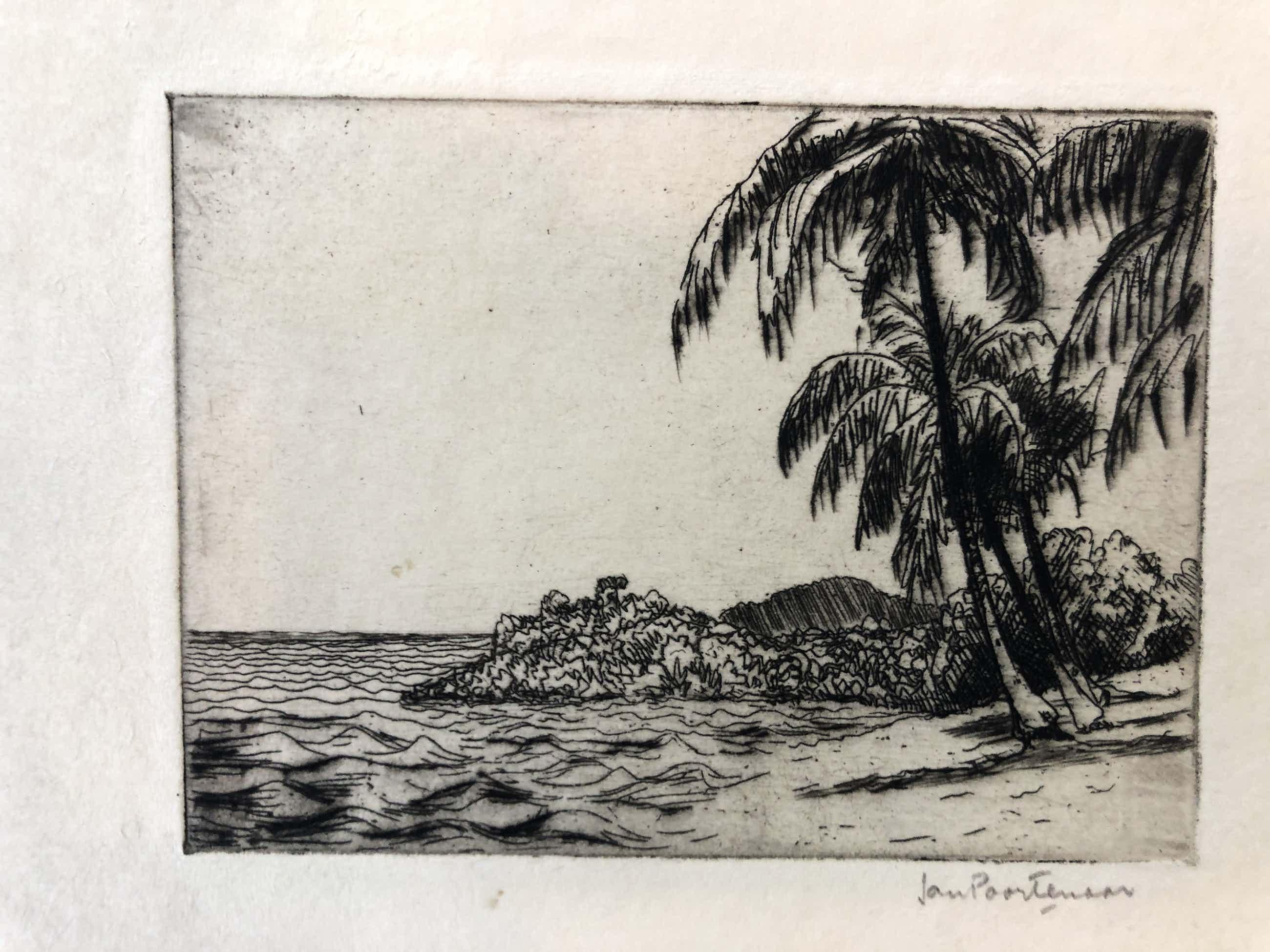 Jan Poortenaar - Strand met palmbomen kopen? Bied vanaf 45!