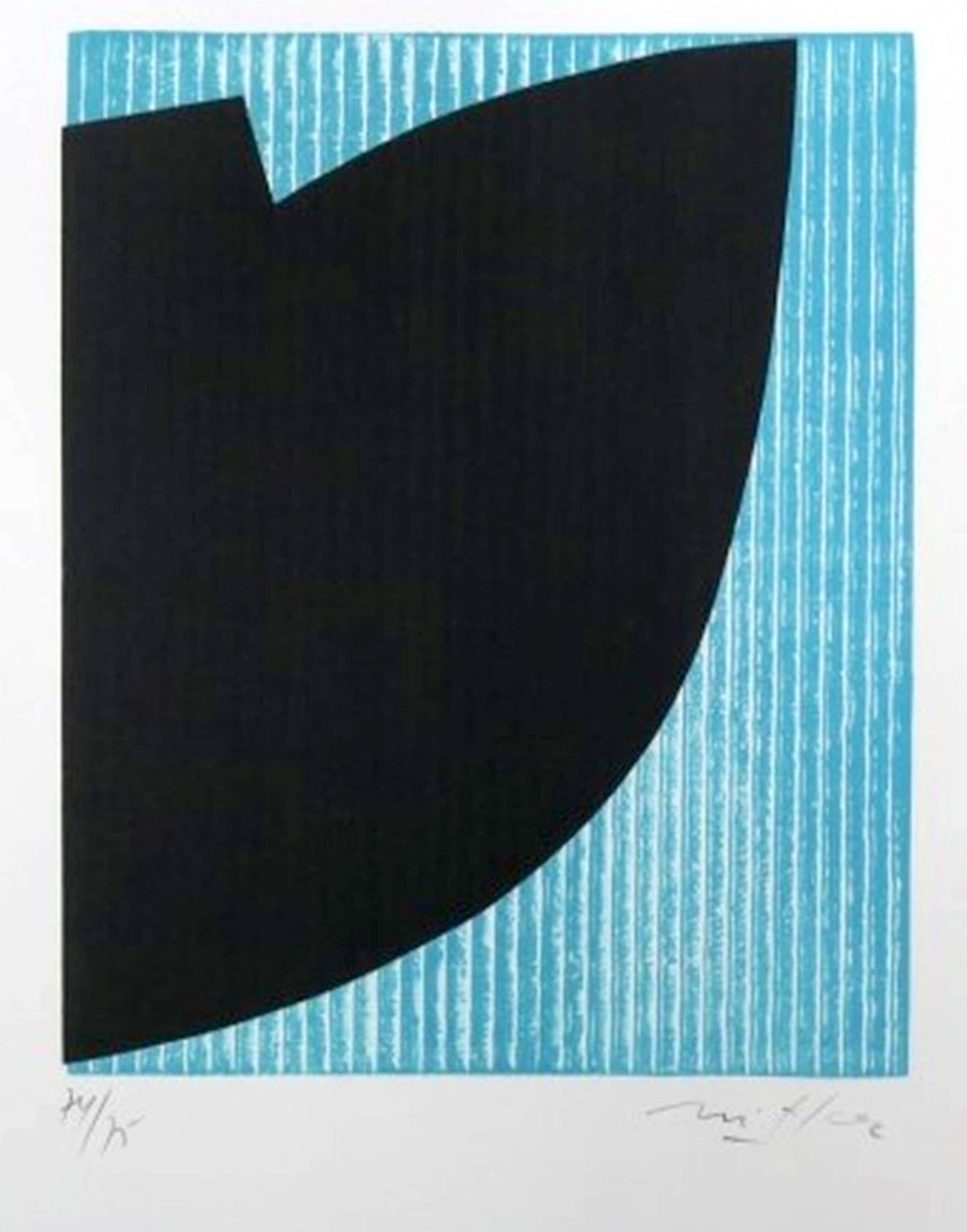 Willem Snitker - Lithografie kopen? Bied vanaf 60!