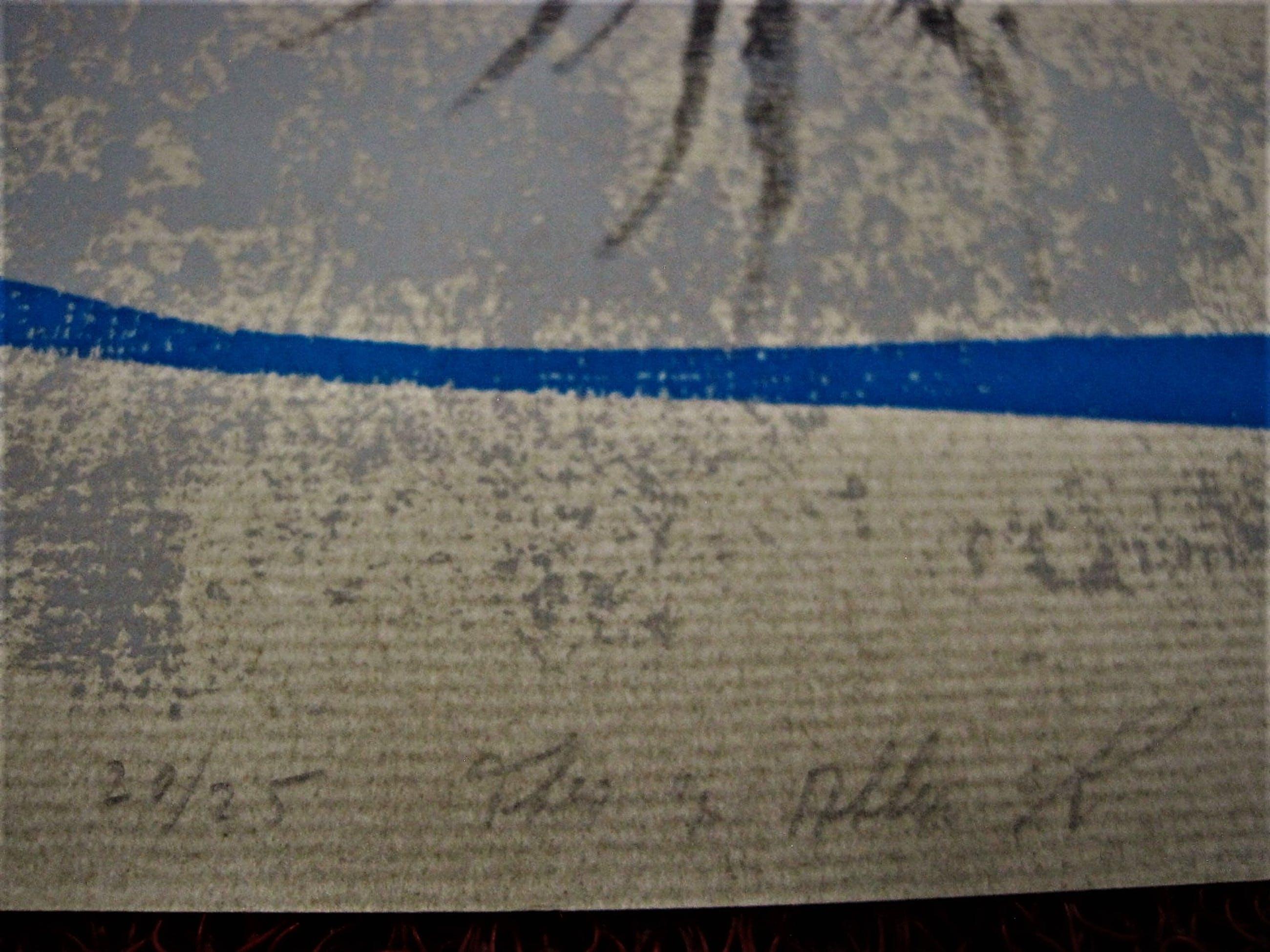 """Theo van den Akker - Virtuoos Zaans Graficus - Serigrafie - beperkte oplage (25) """"DNA"""" gesgneerd kopen? Bied vanaf 20!"""