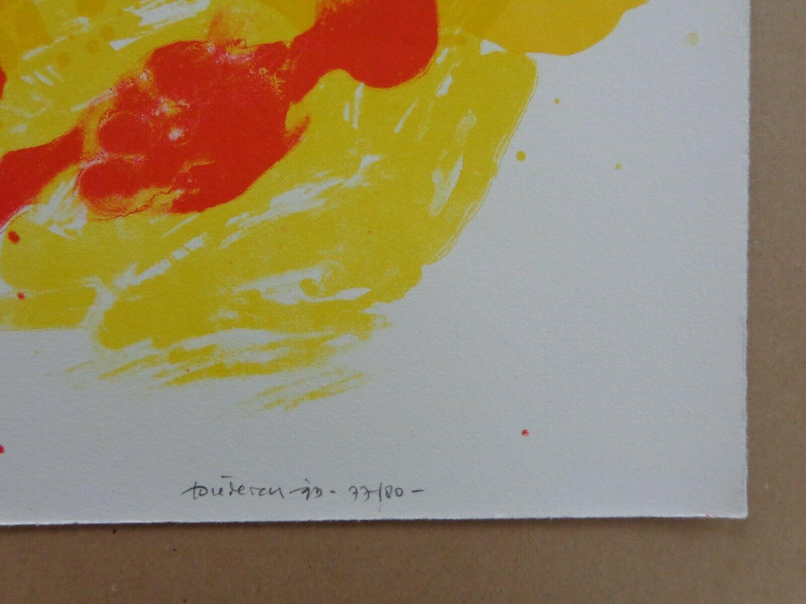 Jef Diederen - FIGURATIE / KLEURLITHO / 76x56cm / SIG / 1993 kopen? Bied vanaf 28!
