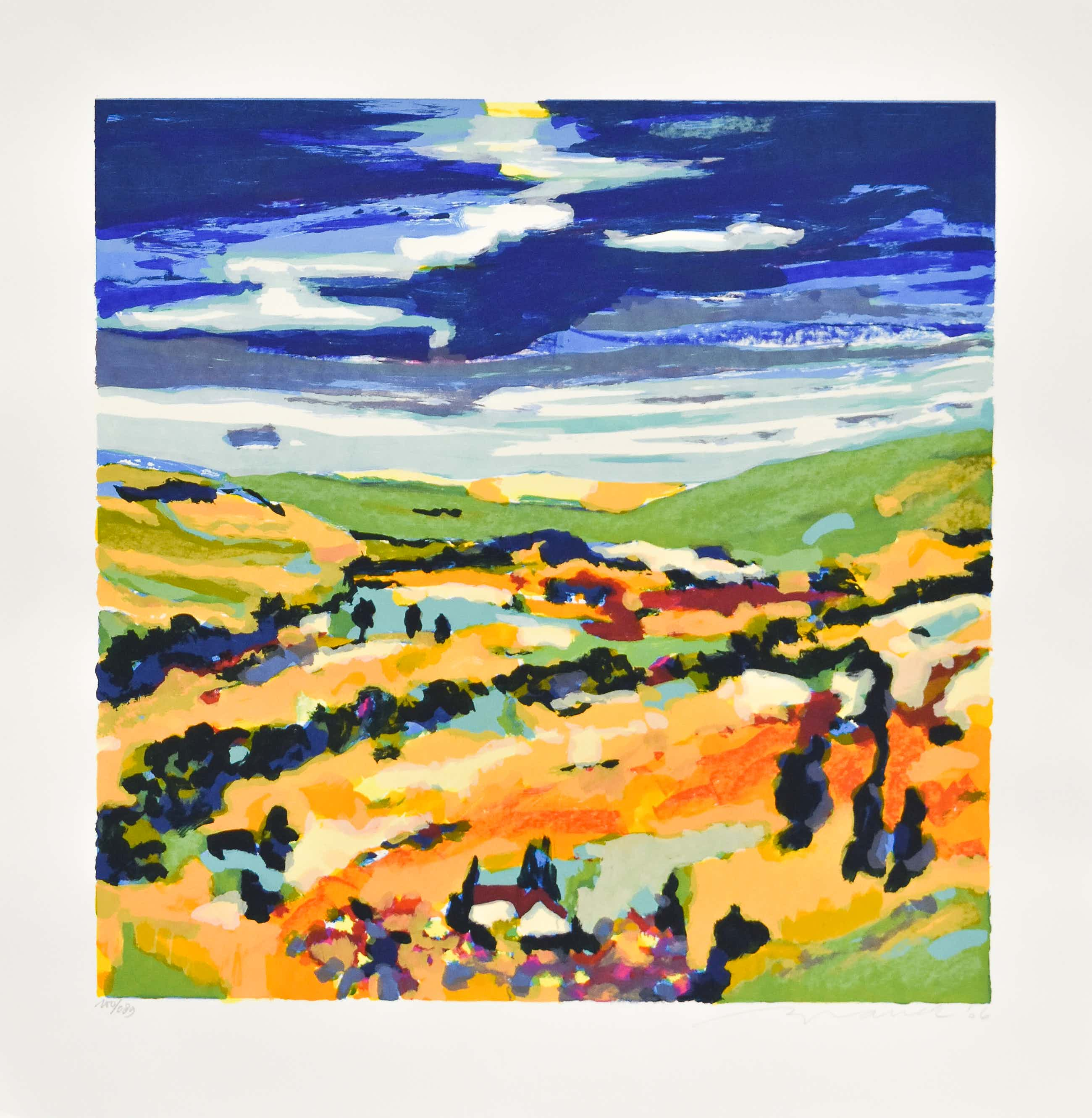 Willem Brauck - Les couleurs de Provence kopen? Bied vanaf 25!